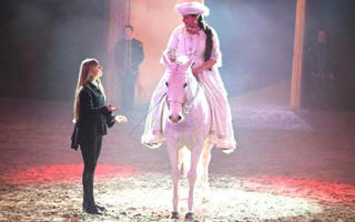 ecuries artpaillange spectacle chevaux camping vendee